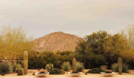 Desert Respite