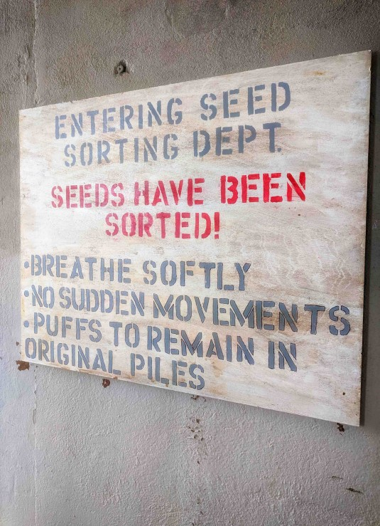 Dandelions: Seed Sorting Department